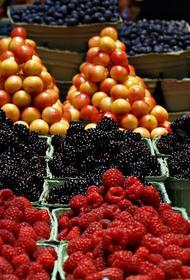 Торговцам с закрытых пяти рынков в  Аксайском районе обещали предоставить новую площадку в ближайшие дни