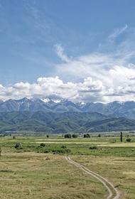 В Киргизии сообщили, что ситуация на киргизско-таджикской границе вышла из-под контроля после перестрелки силовиков