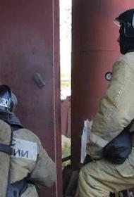 В Екатеринбурге спасли девочку, повисшую на карнизе 17-го этажа из-за пожара