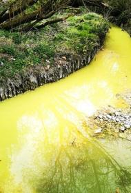 Река в Шотландии стала ярко-желтой