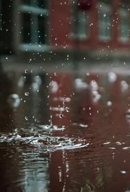 Синоптик Тишковец предупредил москвичей о ливне и сильном ветре