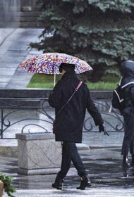 Синоптик Позднякова назвала самый дождливый день в Москве в начале мая