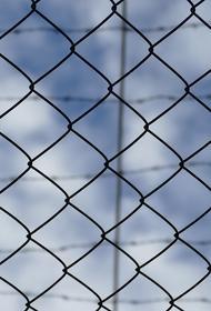 Водитель и директор спортшколы задержаны на Ставрополье после ДТП с детьми