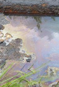 Нефтепродукты пролились в хабаровское озеро