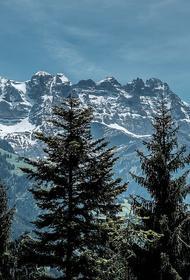Германия может потерять свои последние ледники уже через десять лет