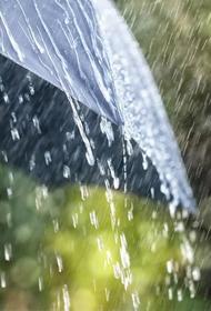 В Россию идут аномальные дожди
