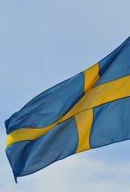 Депутат парламента Швеции Валльмарк поднял вопрос о мерах против РФ из-за инцидента в Чехии