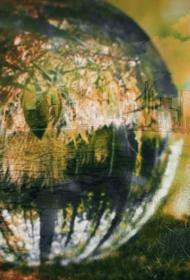 Экологические итоги недели: Мишустин в роли зоозащитника, карта космического мусора, уничтожение заповедных зон Ставрополья