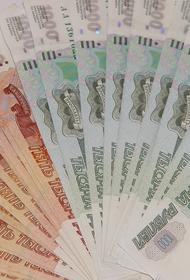 В МВД сообщили о задержании в Петербурге женщины по подозрению в организации «теневого банка»