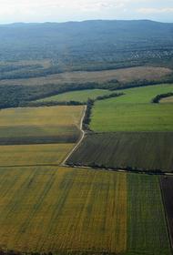 «Дальневосточный гектар» можно будет брать в 10 км от Хабаровска