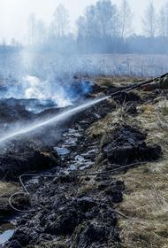 Как в Челябинской области отслеживают лесные пожары