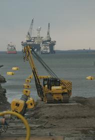 В Германии экологи подали иск против строительства «Северного потока-2»