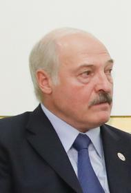 Лукашенко поручил довести до Европы «перспективы» последствий введения новых санкций
