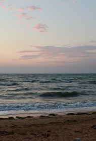 В Крыму прокомментировали заявление Кулебы «о ползучей аннексии» Азовского моря