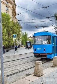 В Москве трамваи трех маршрутов задерживаются на Яузском бульваре из-за наклонившегося дерева