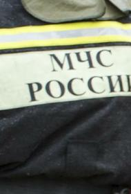 При пожаре в частном доме в Саратовской области погибли женщина и двое детей