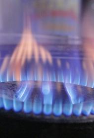 Представитель Газпрома Густов назвал условия бесплатного подключения частных домов к газу
