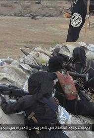Формирования «чёрного халифата» наступают в Нигерии