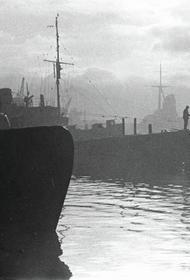 Огненные бури и выжженные земли: как Вторая мировая война повлияла на экологию