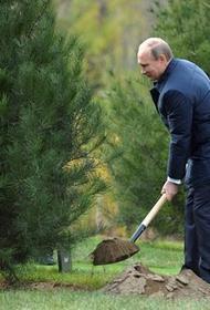 Путин поручил предусмотреть снижение объема выбросов парниковых газов до уровней ниже ЕС