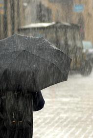 Cиноптики предупредили жителей Москвы и Подмосковья о сильных ливнях в ближайшие дни