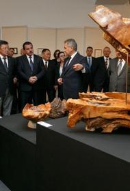 Благотворительный аукцион - 40 миллионов за картины и работы министра обороны Сергея Шойгу
