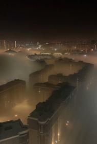 Красноярские экоактивисты подали в суд на власти края
