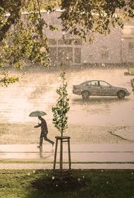 МЧС предупредило жителей Московского региона о дожде с грозой и градом