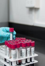 В Германии за сутки выявили более 8,5 тысячи новых случаев заражения COVID-19