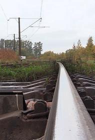 Девушка попала под грузовой поезд рядом с Хабаровском