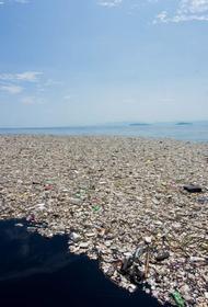 Европа сваливает мусор в Турцию