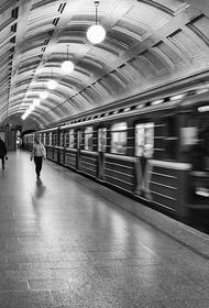 На Люблинско-Дмитровской линии метро движение поездов приостановлено из-за падения человека на рельсы