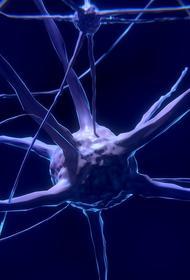 Специалисты назвали основные признаки рака головного мозга