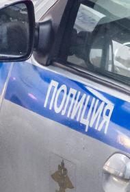 Ученик попытался пройти в петербургскую школу с сигнальным пистолетом