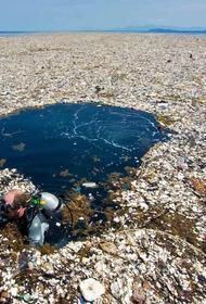 В океане появился новый мусорный остров