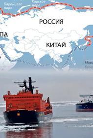 «Пусть плывут себе Севморпутем за пределами наших территориальных вод»