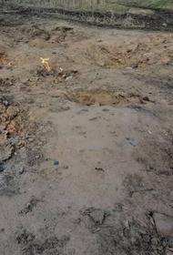 Пламя поднимается прямо из под земли в Темрюкском районе России