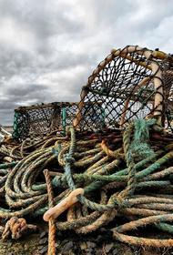 В Охотском море задержано японское судно, которое пыталось скрыться от пограничников