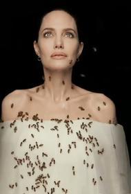 Пчёлы вымирают, по этой причине - человечеству грозит голод планетарного масштаба