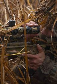 Киевский штаб: «российский снайпер» уничтожил в Донбассе офицера из «Закарпатского легиона» ВСУ