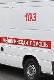 Мотопараплан разбился в Свердловской области