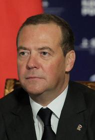 Дмитрий Медведев предложил определить единый статус многодетной семьи
