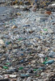 В Индийском океане построят искусственный курортный остров из мусора