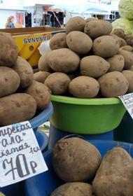 Морозят цены на сахар и подсолнечное масло - дорожает картофель