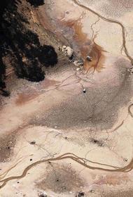 В Бразилии объявлен период «чрезвычайной засухи»