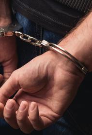 Самарца приговорили к 10 годам лишения свободы за преступления экстремистского характера