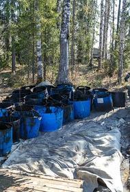 Концентрация нефтепродуктов в реках Коми превышает норму до 500 раз