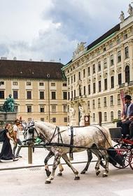 Курц надеется, что российские туристы скоро смогут путешествовать в Австрию
