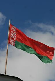 Протасевич сообщил о нескольких «спящих радикальных ячейках» в Белоруссии