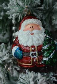Дед Мороз вакцинировался от коронавируса